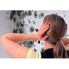 Как удалить плесень в ванной комнате? Средство против плесени Savo