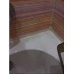 Антибактериальное средство против плесени и грибка SAVO Spray 0,5 л