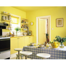 Какой краской покрасить стены на кухне и ванной комнате? Выбор краски для стен.